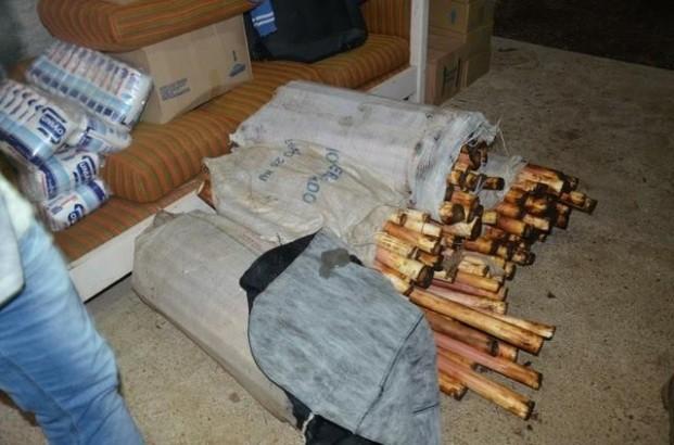 Palmito era armazenado sem condições de higiene (Foto: Divulgação/MP)