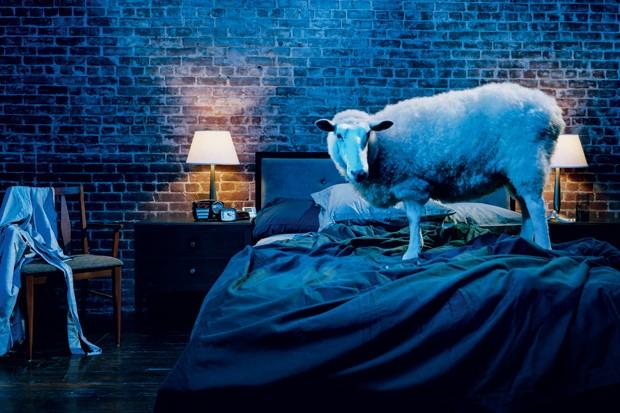 Dormir menos engorda? E a luz fraca, atrapalha muito? Tire todas as dúvidas sobre o sono (Foto: Doron Gilg)
