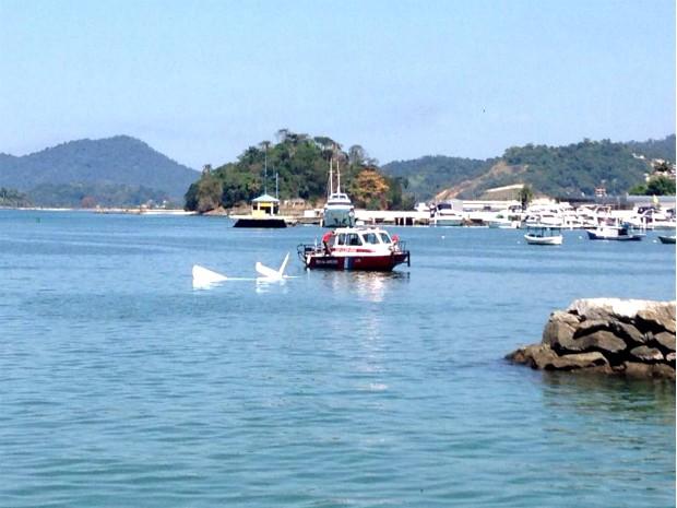 Avião cai no mar de Angra dos Reis (Foto: Marcos Landim/TV Rio Sul)