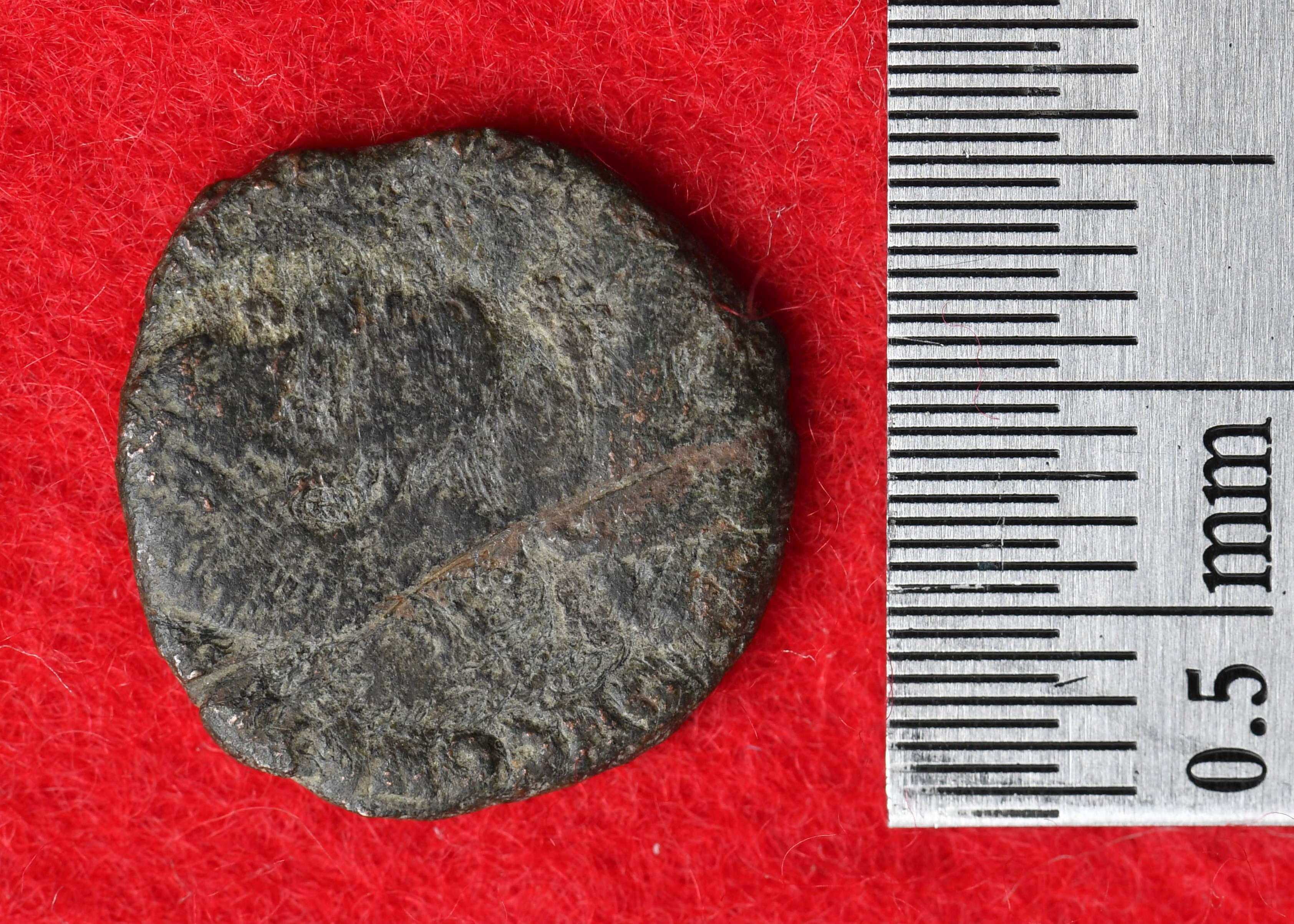 Uma das quatro moedas encontradas (Foto: Conselho de Educação de Urama)