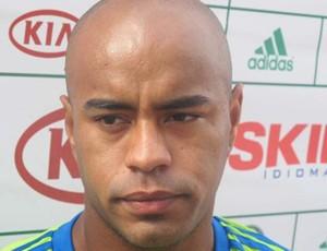 Thiago Heleno, zagueiro do Palmeiras (Foto: Diego Ribeiro / Globoesporte.com)