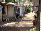 Pernambuco registra 12 mortes pela febre chikungunya