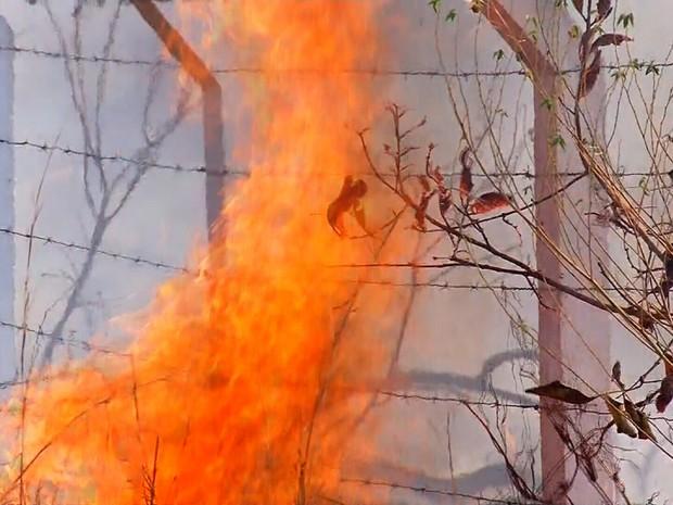 Fogo atingiu a Chapada do Araripe (Foto: TV Verdes Mares/Reprodução)