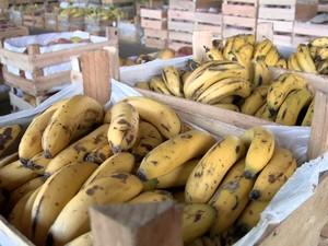 Imagem da Banana na Ceasa (Foto: Reprodução/TV Gazeta)