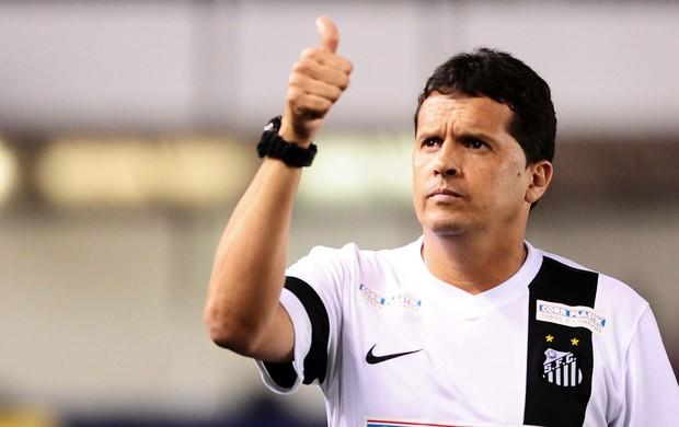Claudinei Corinthians x Santos (Foto: Marcos Ribolli / Globoesporte.com)
