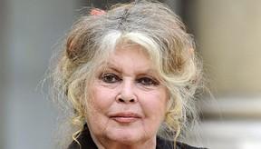 Brigitte Bardot (Foto: reprodução/reprodução)