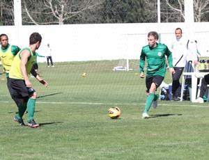 Raul Ibérbia Coritiba (Foto: Divulgação / Site oficial do Coritiba)