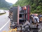 Caminhão com verduras tomba e carga se espalha pela BR-376