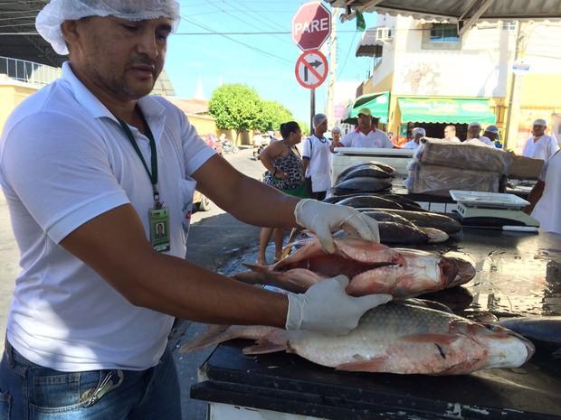 Fiscalização de pescados na Praça do Peixe em Petrolina (Foto: Paulo Ricardo Sobral/ TV Grande Rio)