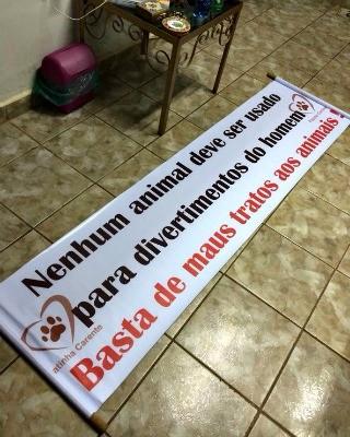 Iniciativa pretende conscientizar sobre maus-tratos contra os animais  (Foto: Divulgação/ Patinha Carente )