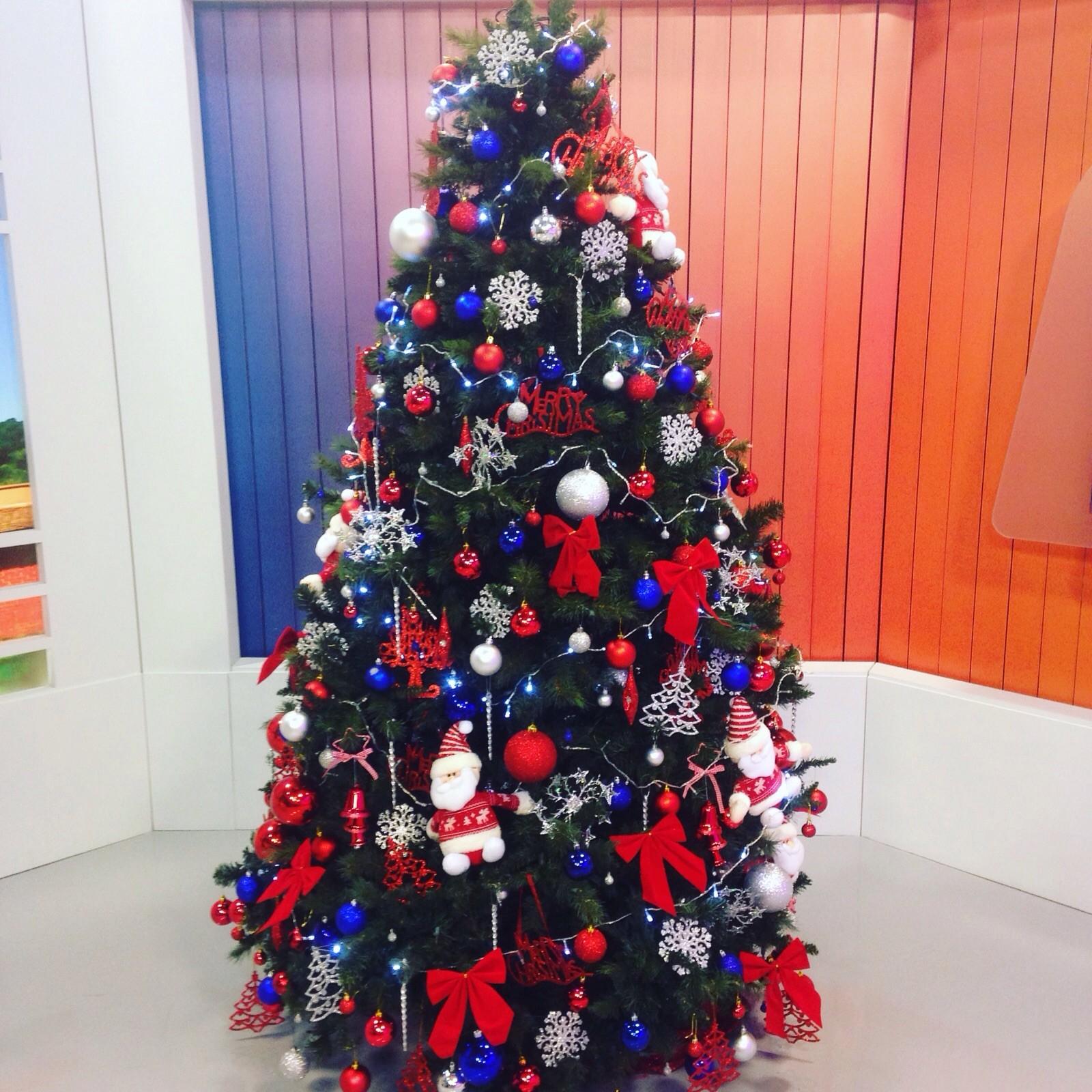 Árvore também foi montada no estúdio do JA de Joinville (Foto: RBS TV/Divulgação)