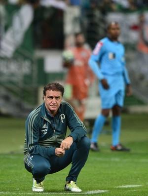 Palmeiras x Chapecoense Cuca