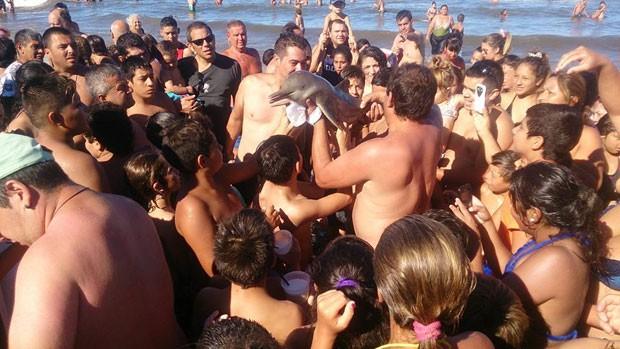 Multidão estava mais preocupada com fotos do que devolvê-lo ao mar (Foto: Reprodução/Facebook/Hernan Coria)