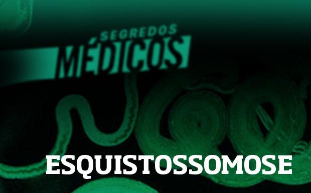 Esquistossomose (Foto: Divulgao)