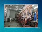 Após fiscalização, CRMV encontra irregularidades em frigoríficos de GO