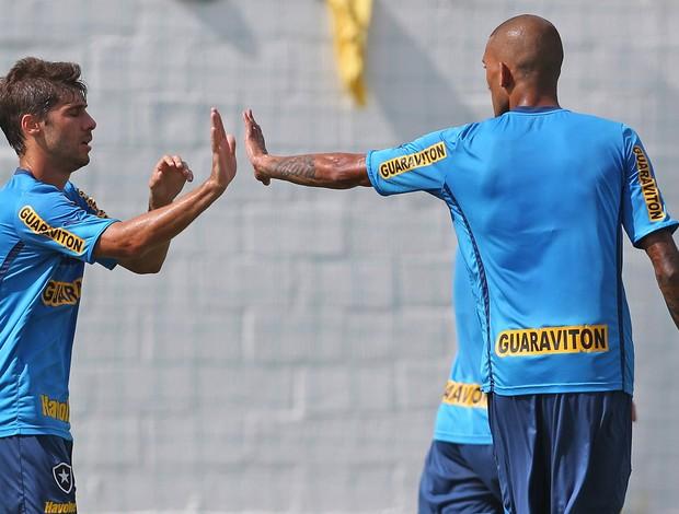 Fellype Gabriel gol jogo treino Botafogo x Macaé (Foto: Satiro Sodré / AGIF)