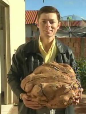 Batata-doce gigante (Foto: Reprodução TV Tem)