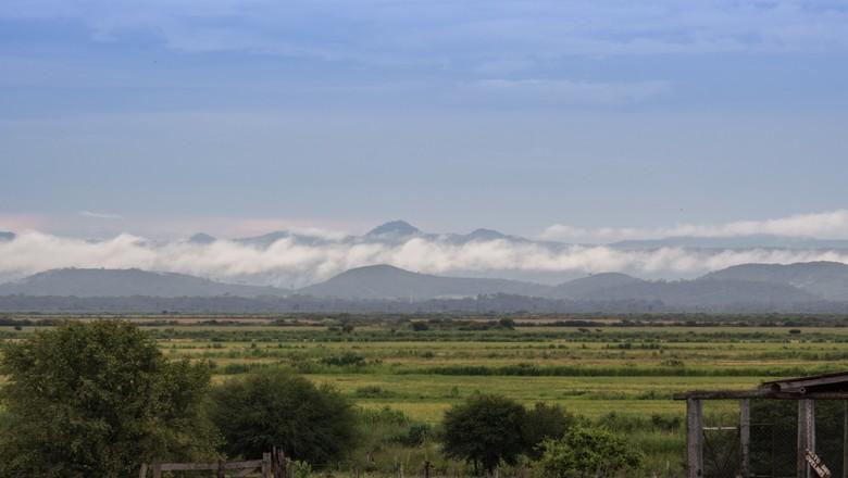Paisagem do município de Miranda, em Mato Grosso do Sul  (Foto: Flickr/ João Andriola)