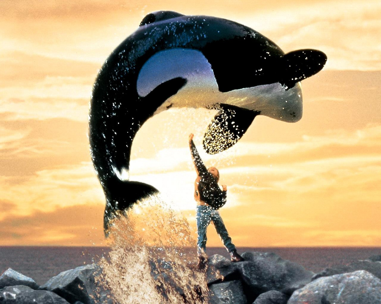 Free Willy – Free Willy (1993) (Foto: Divulgação)