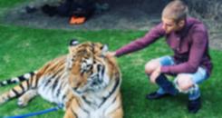 Bieber é criticado por grupo de proteção animal por foto de tigre (Instagram)