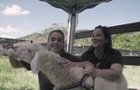 Giovanna Lancellotti é voluntária por um dia no G.A.R.R.A. Animal