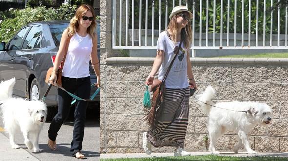 Olivia Wilde adotou seu companheiro, Paco (Foto: .)