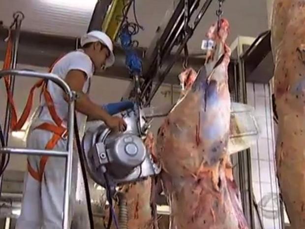 Edição 2014 de abate técnico do Show de Carcaça promovido pela Novilho Precoce MS (Foto: Reprodução/TV Morena)