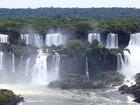 Rede Globo lança novo portal sobre meio ambiente