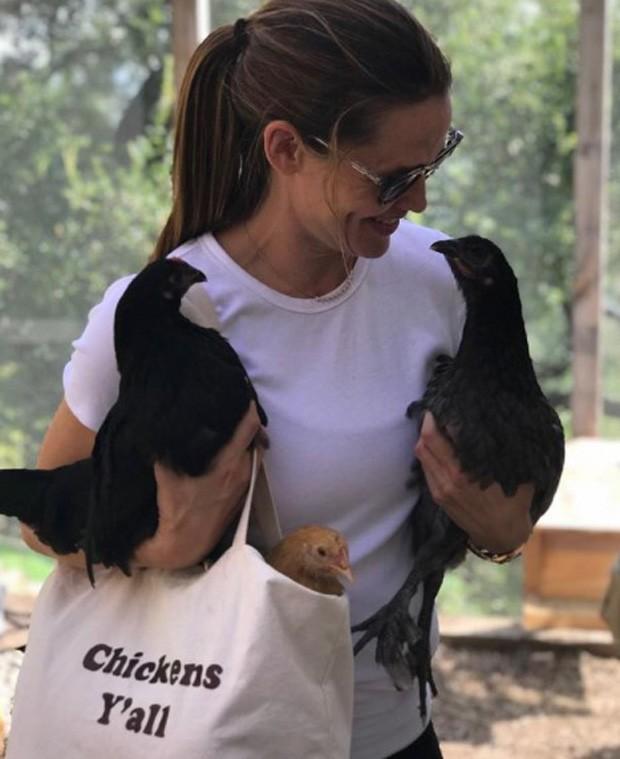 Jennifer Garner e suas galinhas (Foto: Reprodução/Instagram)