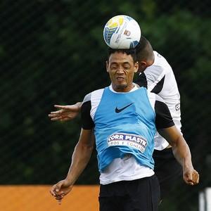 Ricardo Oliveira atacante Santos (Foto: Ivan Storti / Santos FC)