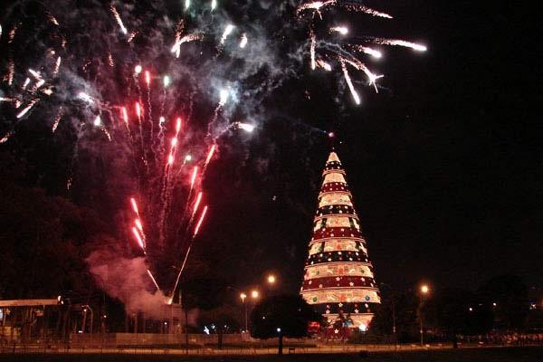 Árvore de Natal do Ibirapuera em 2008 (Foto: Paulo Toledo Piza/G1)