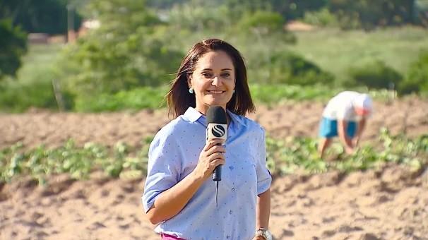 Carla Suzanne falou sobre plantação de batata doce em Sergipe (Foto: Divulgação/TV Sergipe)