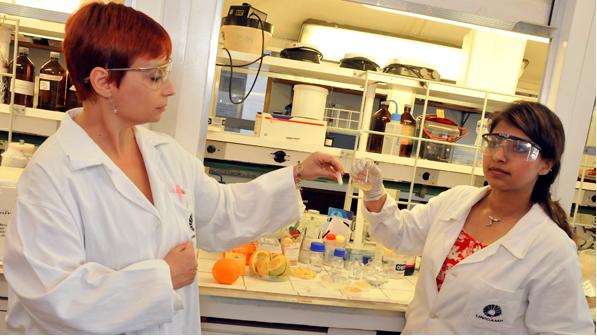 A professora Ljubica Tasic (à esquerda) lidera pesquisa no Instituto de Química da Unicamp (Foto: Antoninho Perri/Portal Unicamp)