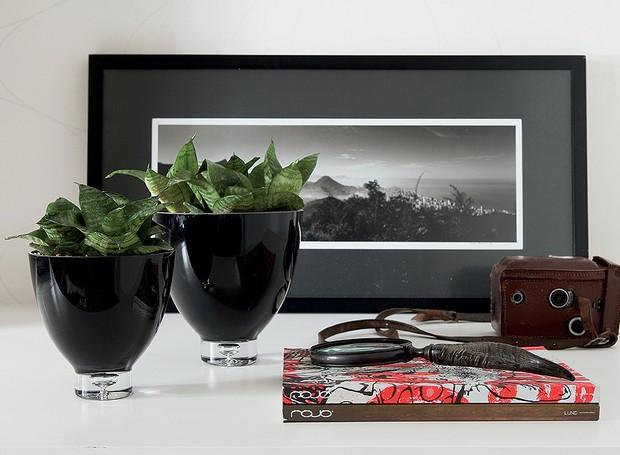 Sobre um aparador, uma mesa lateral ou um balcão, as espadinhas dão um toque verde sem brigar com a decoração (Foto: Tatiana Villa)
