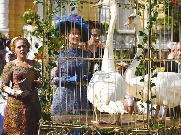 Constância faz o marido comprar um casal de cisnes para enfeitar a cidade (Foto: Lado a Lado / TV Globo)
