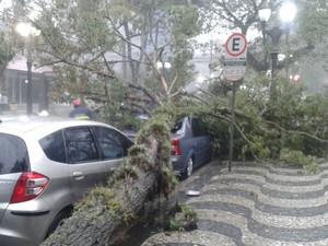 Situação ocorreu por volta das 16h, no bairro Batel (Foto: Ramon Pereira/RPC)