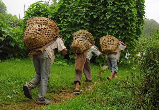 Escravidão moderna atinge 40 milhões de pessoas no mundo