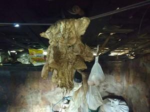 Carne consumida pelos trabalhadores era conservada no sal e ficava pendurada em varal (Foto: Divulgação/Polícia Rodoviária Federal)