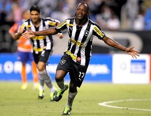 Andrezinho comemora gol do Botafogo contra o Duque de Caxias (Foto: Wagner Meier / Agif)