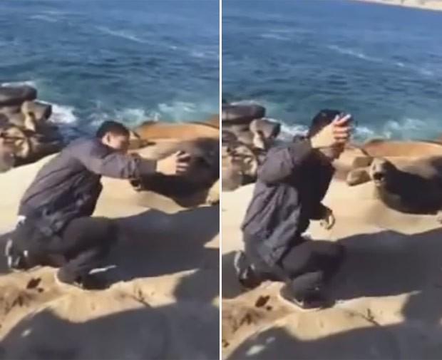 Jovem se deu mal ao tentar tirar selfie ao lado de leão-marinho na Rússia (Foto: Reprodução/YouTube/Fresh Video)
