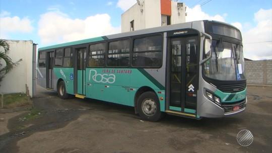 Parte da frota de ônibus que sumiu de garagem na BA é achada em fazenda