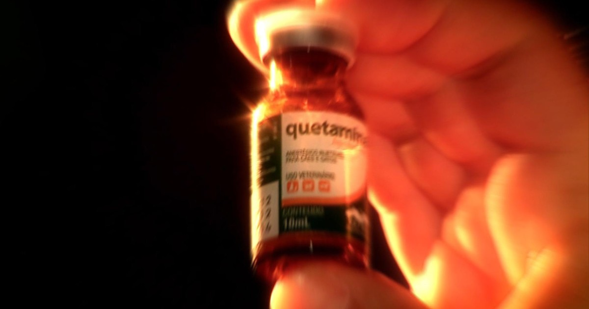b0a10e6ced4 G1 - Droga feita com anestésico usado em cavalos é vendida em festas no RS  - notícias em Rio Grande do Sul