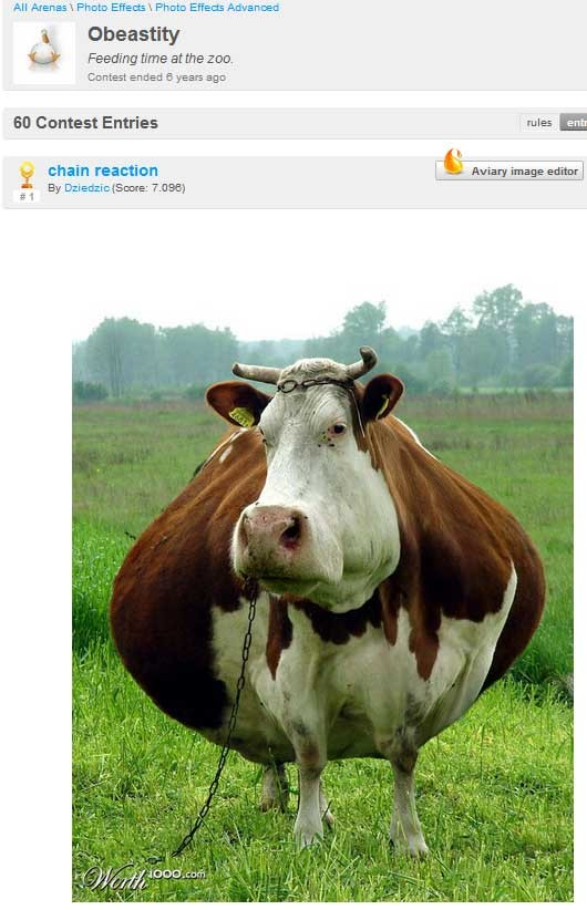 Montagens reunidas no 'worth1000' mostram como animais seriam se estivessem gordos (Foto: Reprodução)