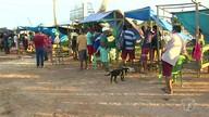 Vendedores reclamam de feira improvisada no Porto dos Milagres