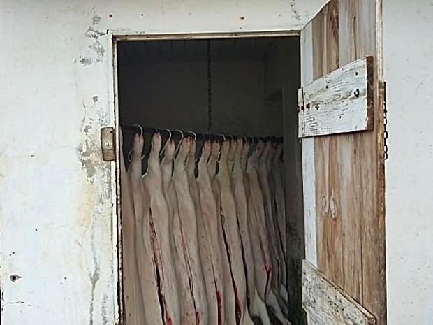 Denúncias anônimas informaram sobre atividades em abatedouro (Foto: Divulgação/Polícia Civil de Taguaí)