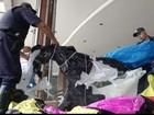 Balão causa incêndio após cair em  área verde de empresa em Jundiaí