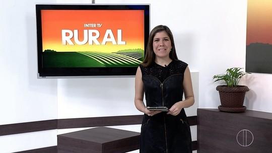 Inter TV Rural quer conhecer melhor o Arraiá do interior do Rio e pede vídeo dos telespectadores