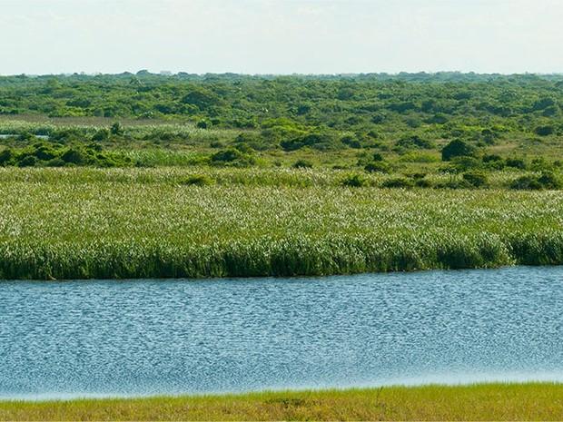 Lagoa de Iquipari é um dos locais que teria sido atingido em São João da Barra (Foto: Divulgação/ Site LLX / G1)