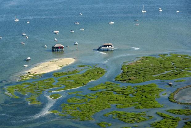 Vista aérea da Ilha dos Pássaros (Ile aux oiseaux), na França (Foto: Nicolas Tucat/AFP)