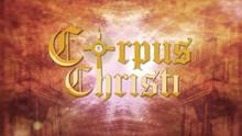 TV Gazeta Sul transmite missa de encerramento de Corpus Christi  (Divulgação/ TV Gazeta)